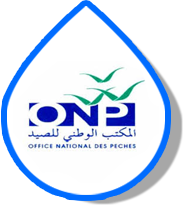 Office National des pêches – ONP
